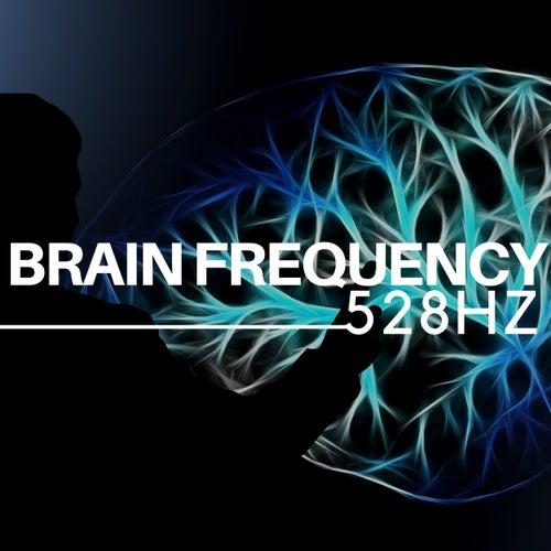 528Hz Brain Frequency - Sleep Music and Music for Deep Sleep de Solfeggio Frequencies 528Hz