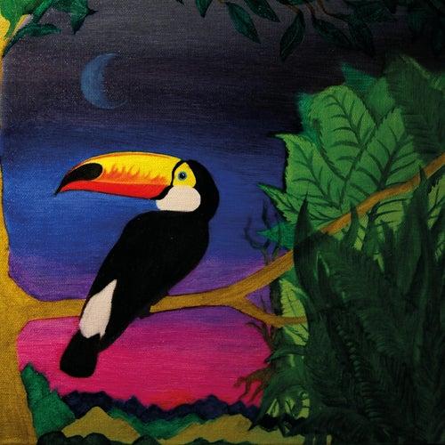 Bird Of Paradise von Wun Two