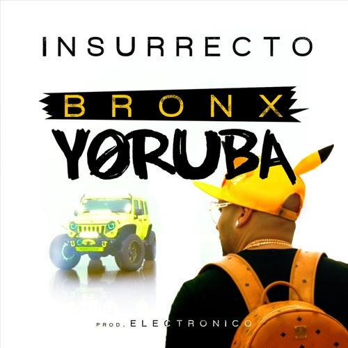 Bronx Yoruba de Insurrecto