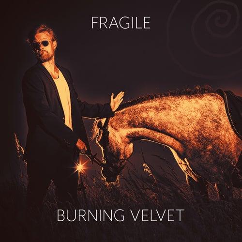 Fragile by Burning Velvet