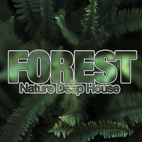 Forest, Nature Deep House di Various Artists