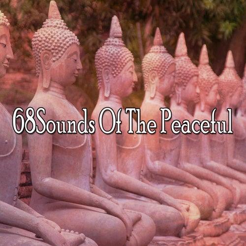 68Sounds Of The Peaceful de Massage Tribe