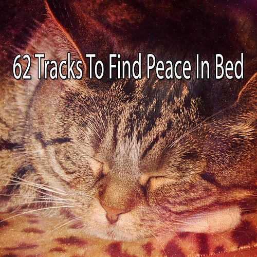 62 Tracks To Find Peace In Bed de Lullaby Land