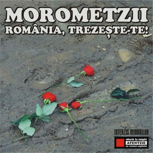 România, trezește-te! von Morometzii