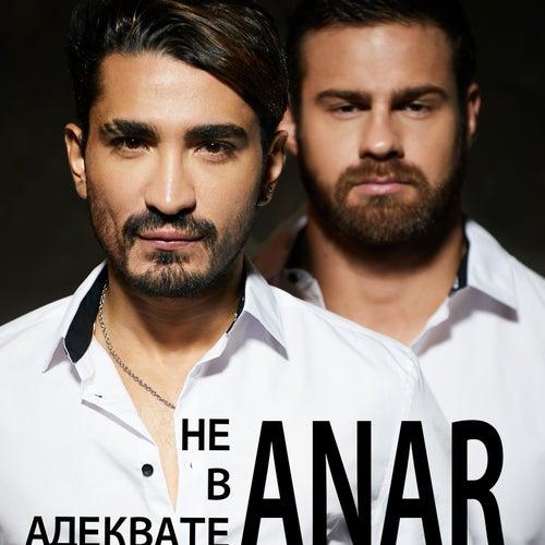 Не в адеквате von Anar