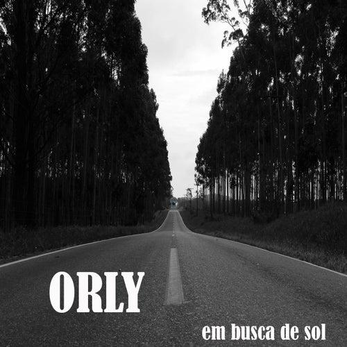 Em Busca de Sol by Orly