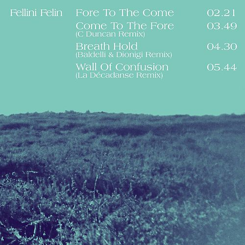 Temporary Fiction (Remixes) by Fellini Felin
