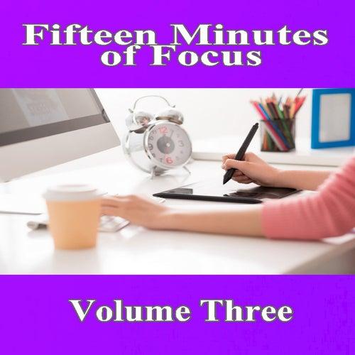 Fifteen Minutes of Focus, Vol. 3 von Mike Williams
