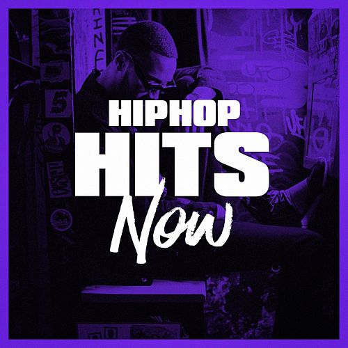 Hip-Hop Hits Now by Various Artists