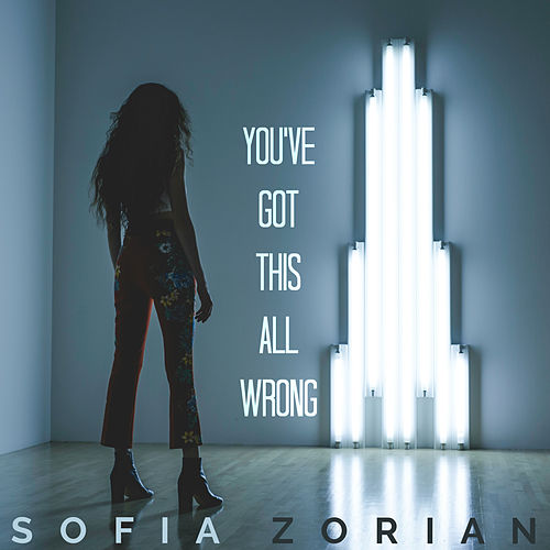 You've Got This All Wrong by Sofia Zorian