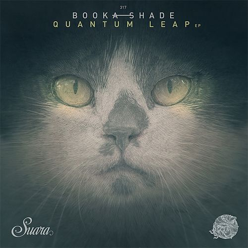 Quantum Leap by Booka Shade