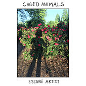 Escape Artist by Caged Animals