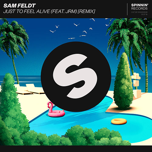 Just To Feel Alive (feat. JRM) (Remix) van Sam Feldt
