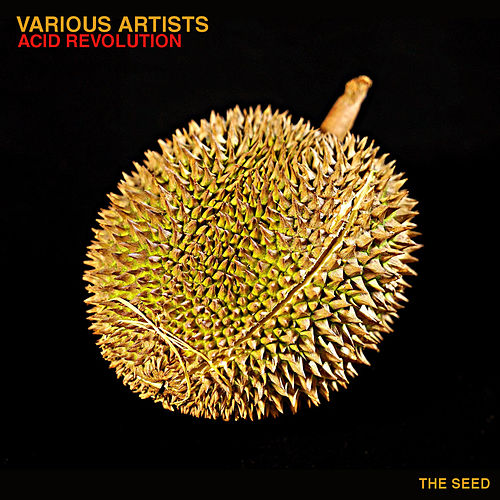 Acid Revolution von Various Artists