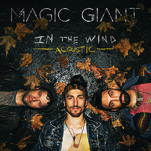 In The Wind (Acoustic) de Magic Giant