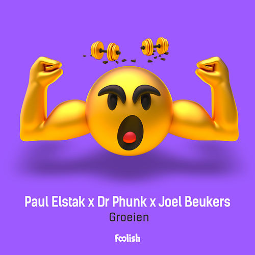Groeien (Radio Edit) by Paul Elstak
