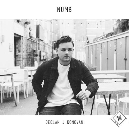 Numb von Declan J Donovan