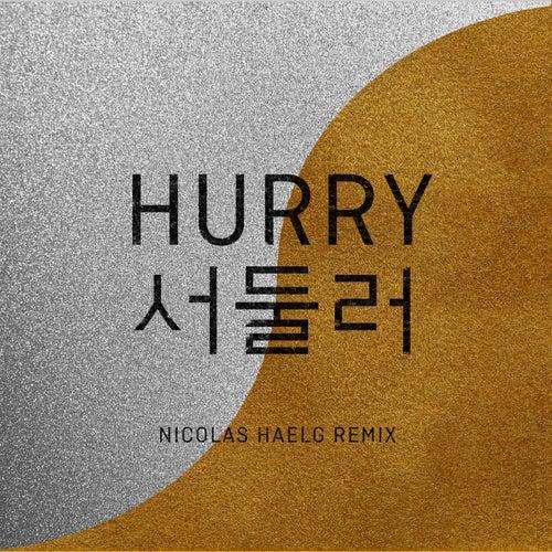 Hurry Hurry (Nicolas Haelg Remix) by Baba Shrimps