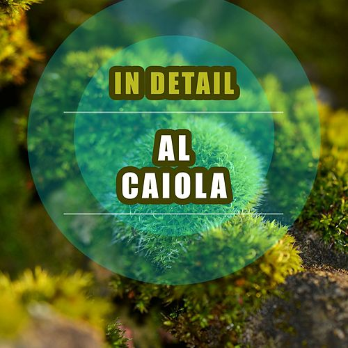 In Detail by Al Caiola