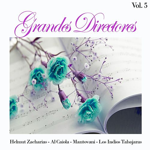 Grandes Directores, Vol. 5 by Various Artists
