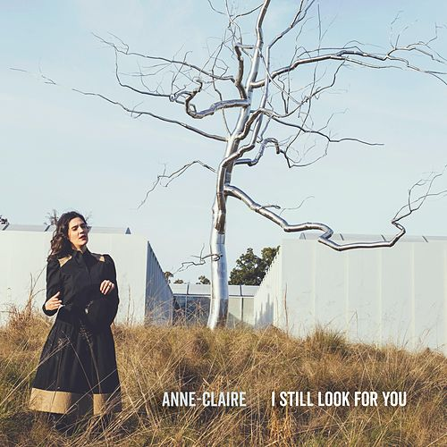 I Still Look for You by Anne Claire