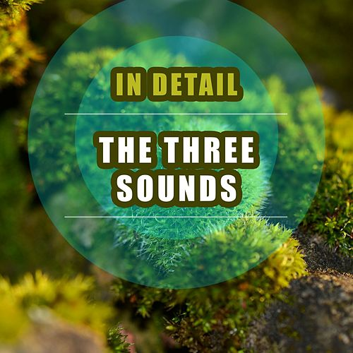 In Detail by The Three Sounds