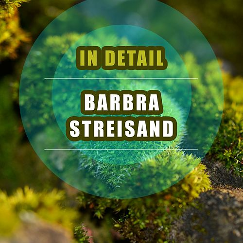 In Detail by Barbra Streisand