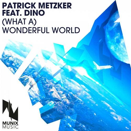 (What A) Wonderful World de Patrick Metzker