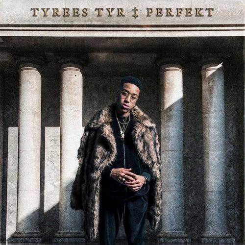 Perfekt von Tyrees Tyr