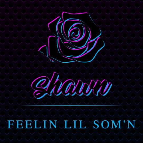 Feelin Lil Som'n de Shawn Stockman