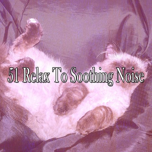 51 Relax To Soothing Noise by Relaxing Spa Music