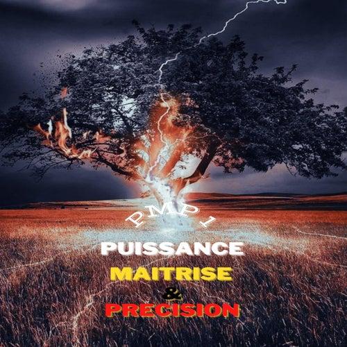 Puissance, maitrise & précision de Various Artists
