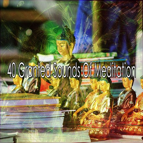 40 Granted Sounds Of Meditation de Study Concentration