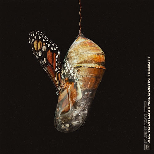 All Your Love (Remixes) by Flight Facilities