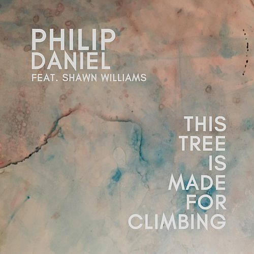 This Tree Is Made for Climbing by Philip Daniel