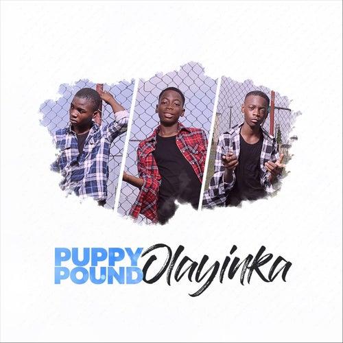 Olayinka by Puppy Pound