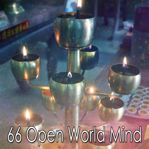 66 Open World Mind de Massage Tribe