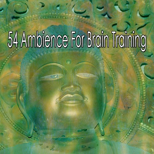 54 Ambience For Brain Training de Study Concentration
