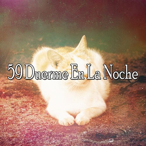 59 Duerme En La Noche by Deep Sleep Music Academy