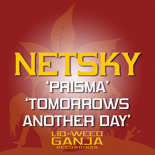 Prisma / Tomorrow's Another Day de Netsky