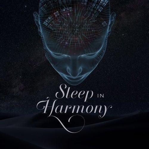 Sleep In Harmony by Jacob Karlzon