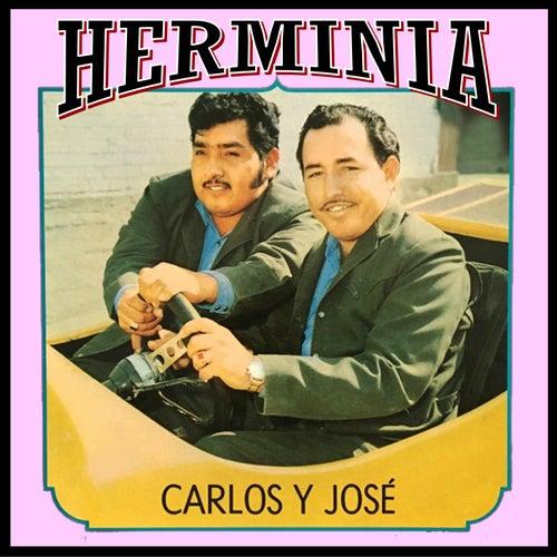 Herminia de Carlos y José