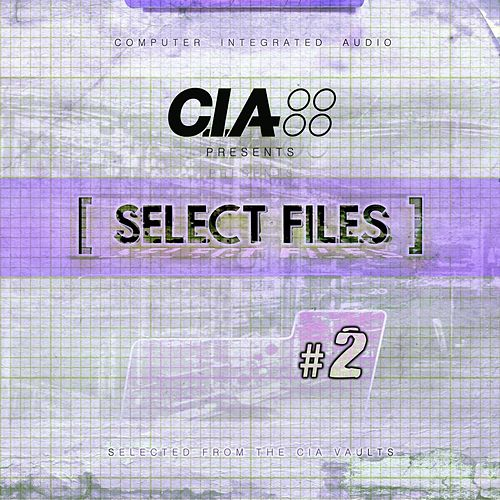 Select Files 2 von Various Artists