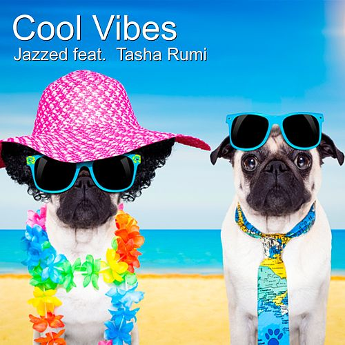 Cool Vibes (feat. Tasha Rumi) von Jazz E-D