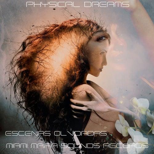 Escenas Olvidadas von Physical Dreams