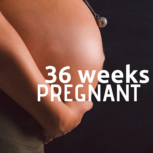 36 Weeks Pregnant by Brian Eno