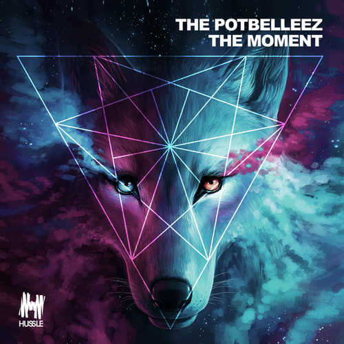 The Moment von The Potbelleez