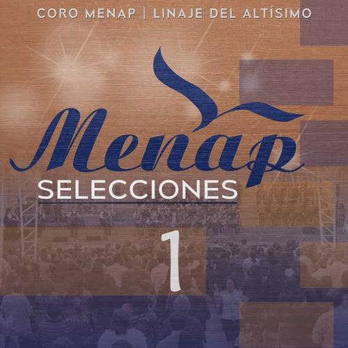 Menap Selecciones 1 de Various Artists