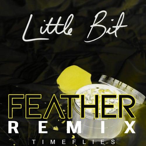 Little Bit (Feather Remix) by Timeflies
