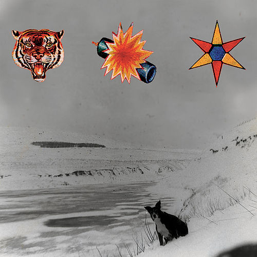 Dry the Rain (Remaster) de The Beta Band